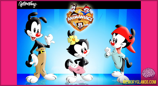 funny cartoon animaniacs tv show photo
