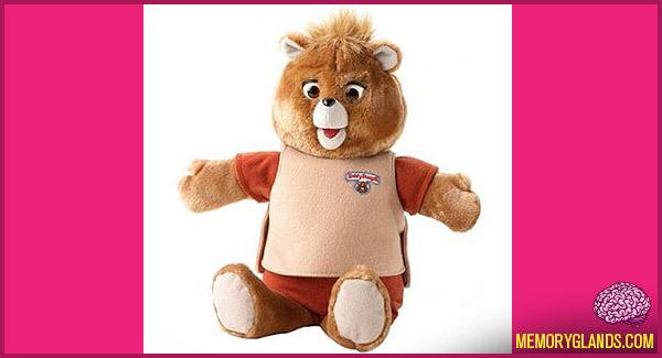 funny toy stuffed bear teddy ruxpin photo