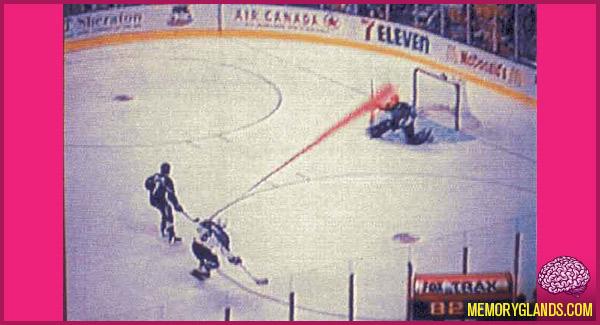 funny fox glowing puck nhl hockey photo